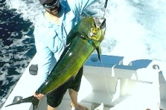 Large Dorado return to Corbeteña, hopefully all the other fishing grounds shortly!