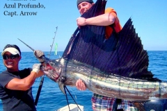 Rare Sailfish boated on our new panga Azul Profundo with Captain Arrow