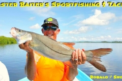 Snook or Robalo in Spanih around the rivers mouths, shoreline and structure...