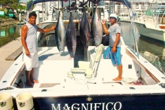Magnifico and several Yellowfin Tuna around the 100 lb mark at Corbeteña