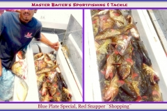 Family Fishing Special, A Fish Box full of plate sized Snapper...this was a ¨shopping¨ day on Bella Del Mar. They taste great, they´re not too much for your 8 yr old and they taste great!