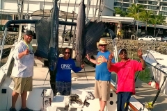 Sailfish off Punta Mita and El Morro!