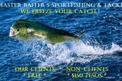 Master Baiter´s is the only company in Puerto Vallarta that offers Free Fish Freezing to our clients. Once again we Support Our Clients with Necessary Services. Fish with someone else, we´ll still help, but it will cost you....