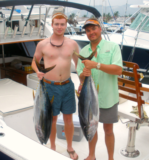 Yellowfin Tuna by Punta Mita