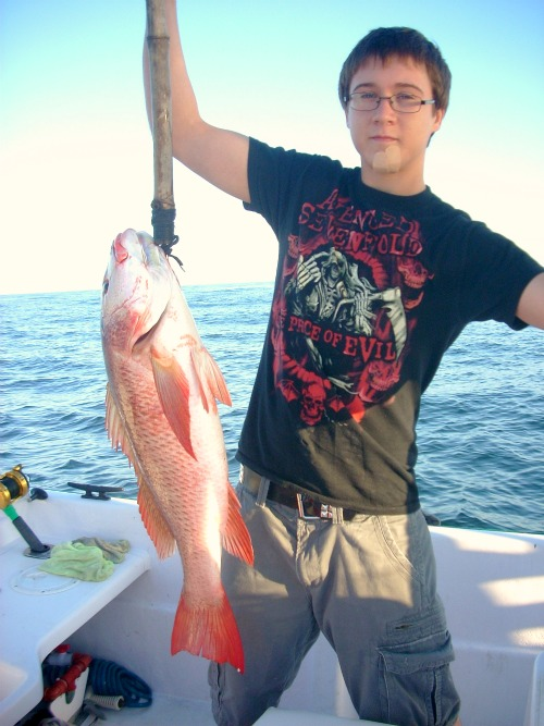 Red Snappers (25lbs), Marietta Islands, On Panga Policonfondido