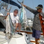 Rooster  Fish on Magnifico with Angler Steve Orcutt