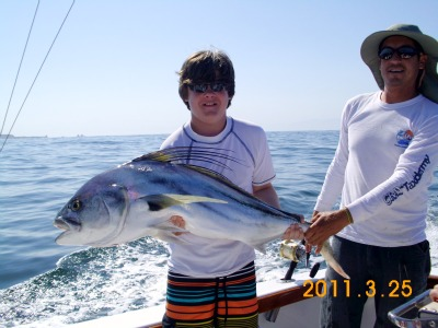 Rooster Fish at the Marietta Islands, Griffin Chartonnett , Magnifico