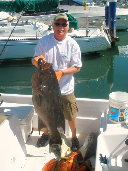 Broom-Tail-Grouper-80-lbs-02-12-2011-Policonfondido