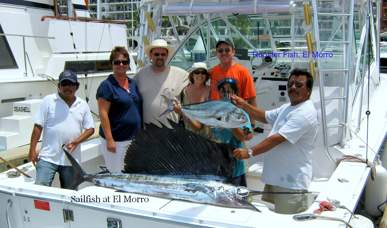07 18 2013 El Morro Sailfish Rooster