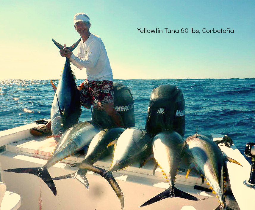 03 05 2012 Yellowfin Tuna 60lbs off El Banco Discriptive text only