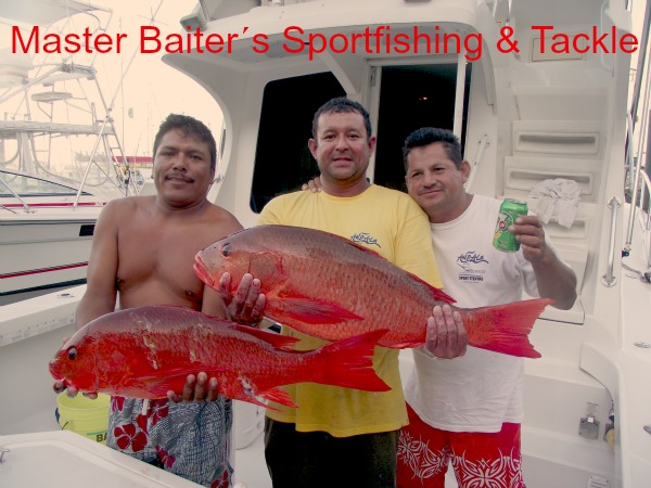 02 10 2012 Snappers on Andele 600Pxls