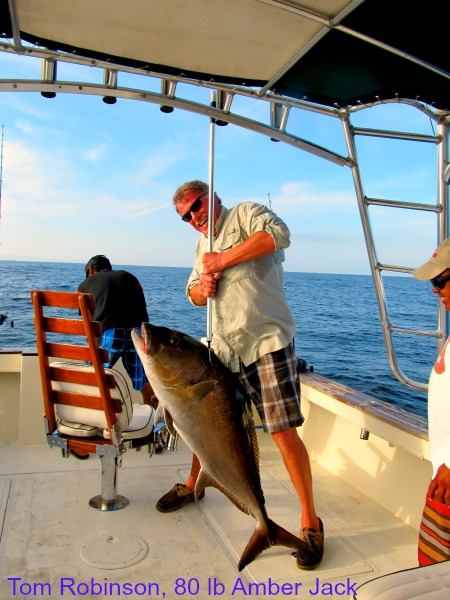 02 14 2014 Tom Robinson, Guanatuna, 80 lb Amber Jack on gaff 600 pxls wText