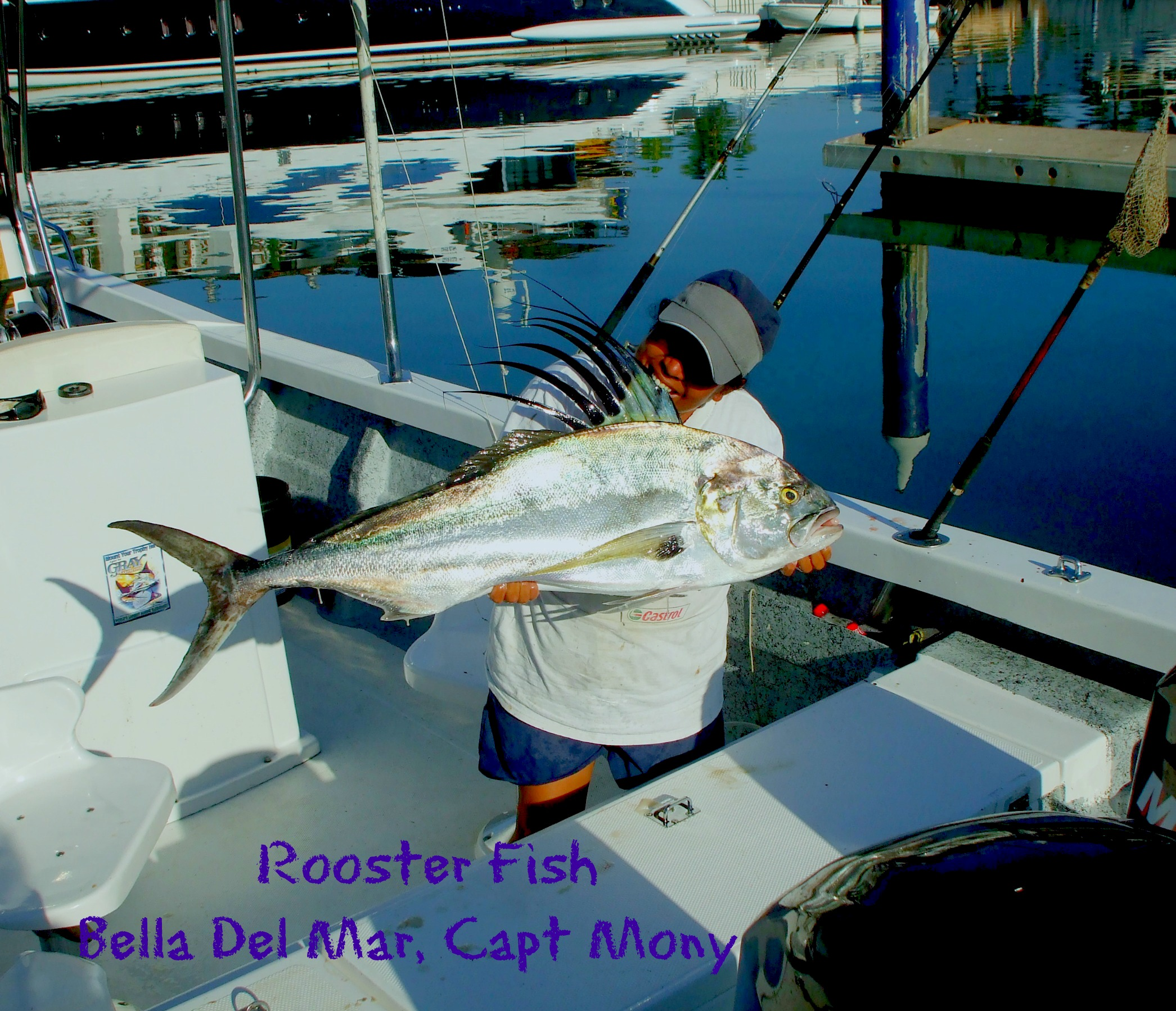 03 26 2014 Rooster Fish, Bela Del Mar, 8 hrs, Full size