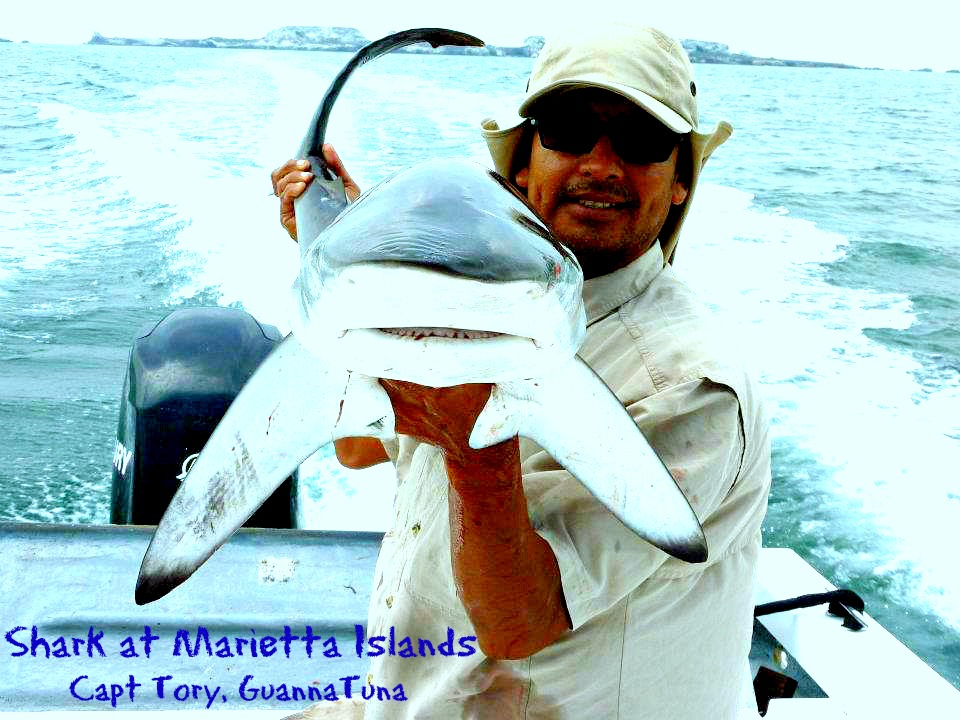 03 27 2014 Capt Tory wShark at Marietta islands