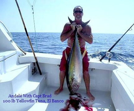 09 13 2014 Brads Yellowfin Tuna 600 pxls