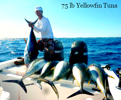11 01 2014 Yellowfin Tuna 60lbs off El Banco