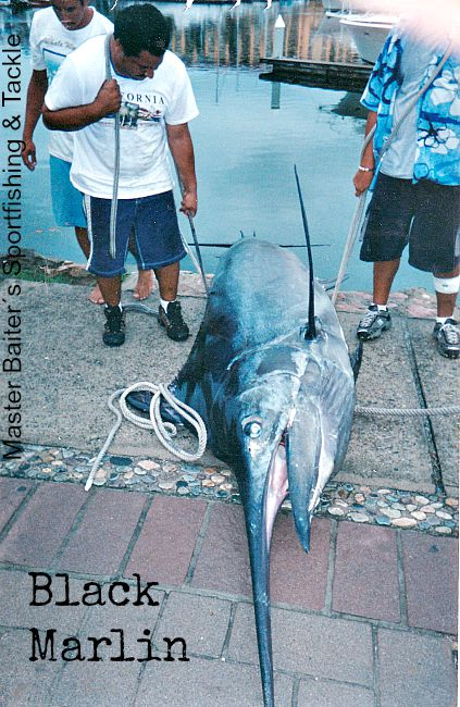 07 18 2015 Black Marlin, El Banco, MBText 650 pxls