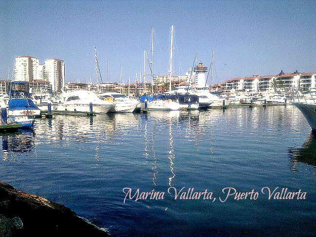 Marina Vallarta Morning
