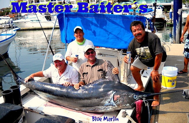 10 21 2015 Blue Marlin, Bella Del Mar, 10 hrs 650 pxls MBText