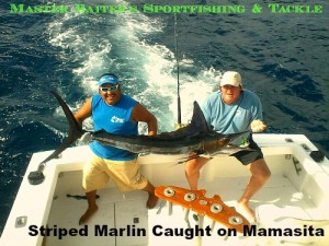 01 11 2016 Striped marlin on Mamasita 8 hrs, Punta Mita, 500 pxls MBText