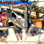 Dorado north of Corbeteña with Striped Marlin, Sailfish and Tuna!