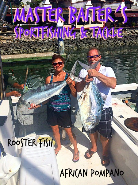 Rooster Fish and Pampano are around the Marietta Islands and Anclote Reef near Sayulita, if YOU´RE LUCKY!