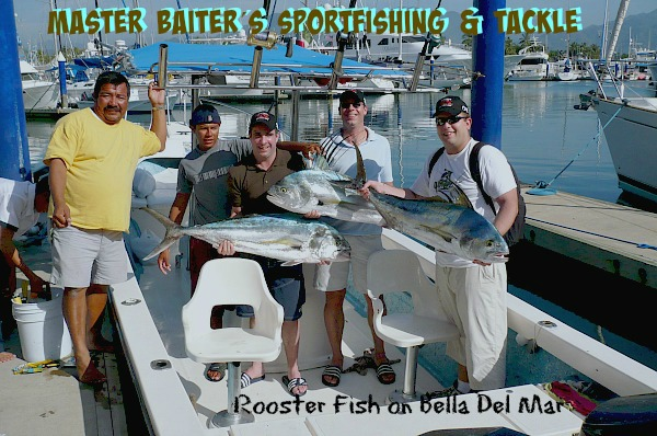 Rooster Fish !!