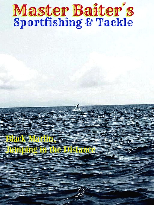 Black Marlin Jumping off in the Distance