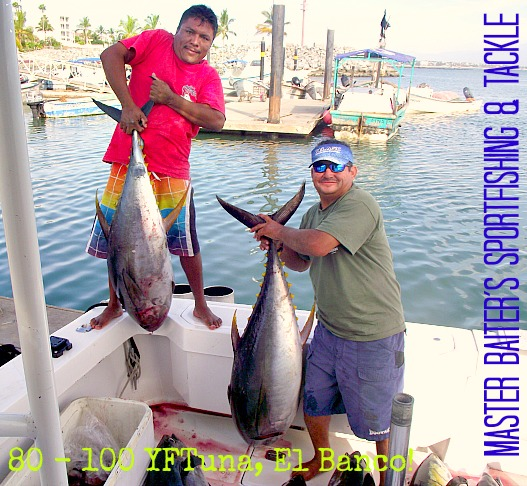For the moment, who knows how long this will last, but we have mid sized Yellowfin Tuna to large Yellowfin Tuna. It just depends on what´s in the area when you´re there!