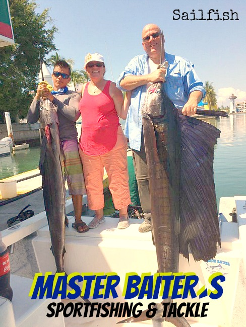 Sailfish moved into the bay as Sardines were massive around the bay!