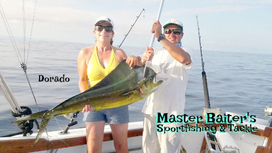 25 lb Dorado all of a sudden made a welcome appearance at Corbetena.