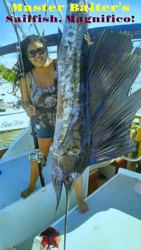 Sailfish at El Morro to Punta Mita, boated on Magnifico!