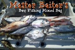 01 25 2018 Mixed bag pompano, mackerels, bonito 650 pxls MBText
