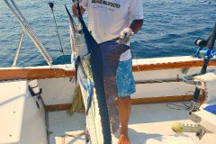 05-26-2019-Capt-Ceasar-Magnifico-Stripers-in-the-bay-1-Orig-Enhanced-650-pxls-MBText