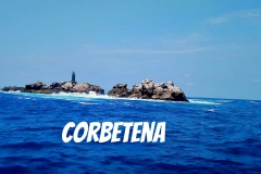 08 22 2018 Corbetena The Rock