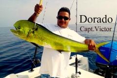 08 23 2018 Capt Victors Dorado