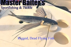 09 02 2018 Rigged Flying Fish Bait Cropped 600 pxls MBText