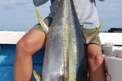10 31 2018 Yellowfin Tuna 80 lbs a