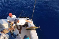 11 04 2018 Marlin hookup Tournament, Marcos Taymayo, orig 1a bait first