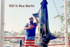 11 22 2017 Bay Marlin, Capt Cesar, El Jefe, 500 lb Blue Marlin in Bay