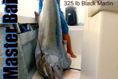 12 20 2017 350 lb Black marlin Profetta b 650 plxs MBText